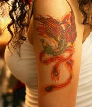 Eagle Tattoo Designs Free on Karma Phoenix Bird Tattoo  Eagle Style    Google Fan Webmaster Forum