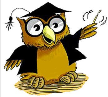 normal one don   t get to morethan a quarter of this size  said    Owl Teacher Cartoon
