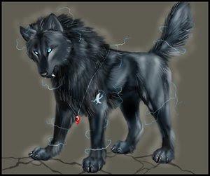 http://3.bp.blogspot.com/_vuvz3yguteg/RsSh0BQ441I/AAAAAAAAAKc/m8tvxuXdXSk/s400/blackwolfvl5.jpg