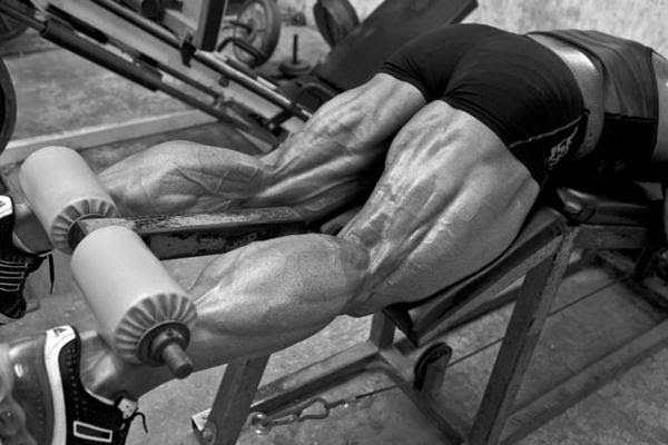 Bodybuilder Erik Frankhouser 3 | Bodybuilders & Muscle Men  Erik