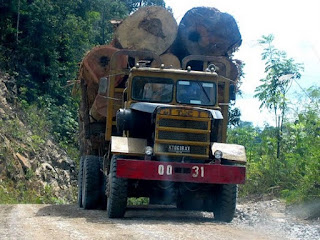 Gambar kendaraan angkut kayu