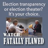 Fatally Flawed:  The Pursuit of Justice in a Suspicious Election