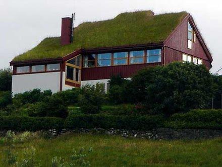 Mi casa ecol gica una azotea verde de bajo costo - Como se limpia una casa ...