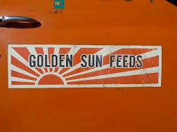 IH Grain Truck Door - 1