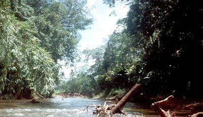 Rio platano reserve