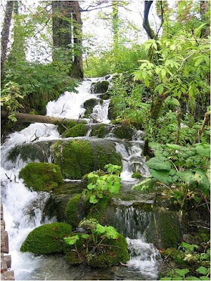 Water fall at Plitvice Lake
