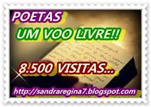 POETAS COMEMORA 8.500VISITAS!!!