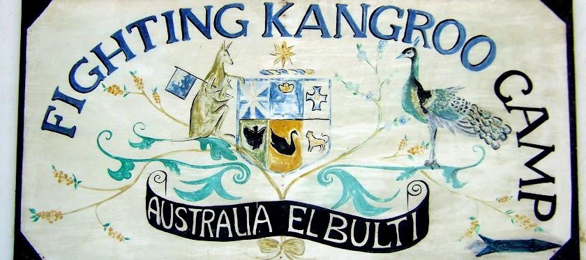 Fighting Kangaroo