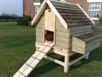 Cool chicken coop you can build a chicken coop in 3 days for Cool chicken coop plans