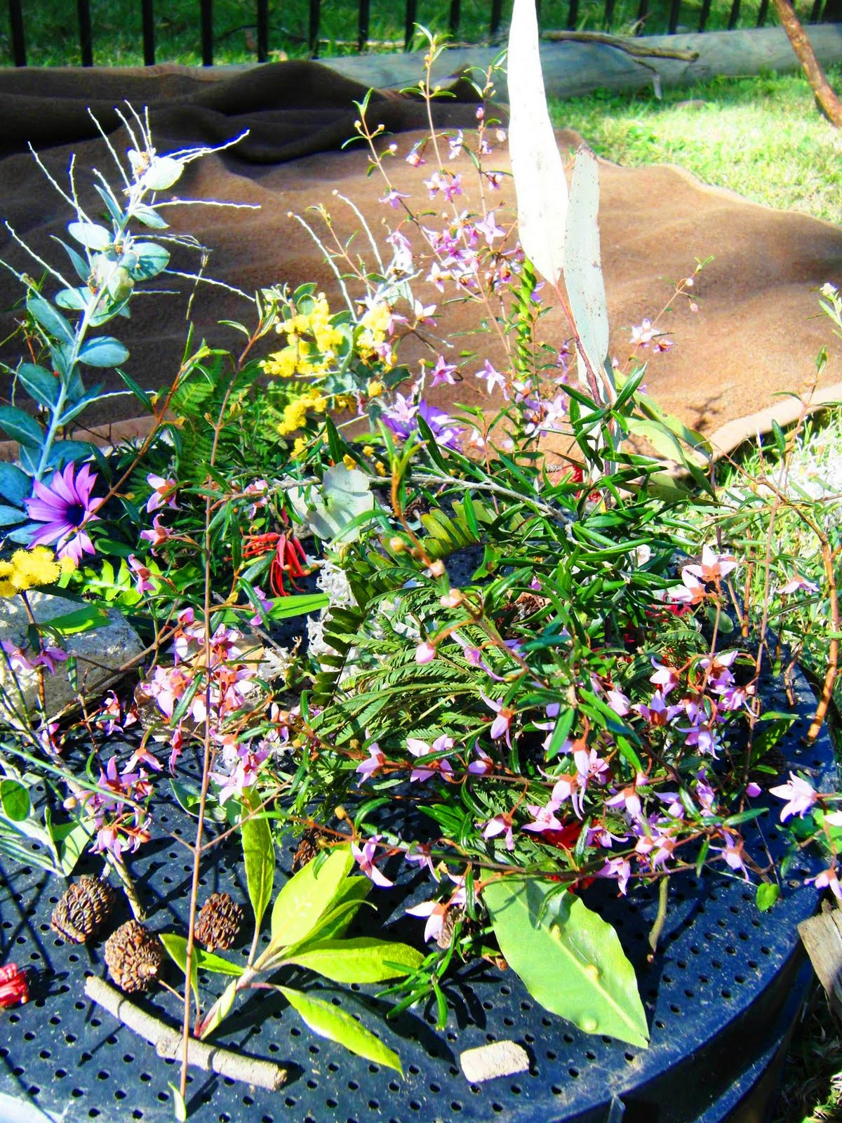 let the children play: fairy gardens and fairy shelters