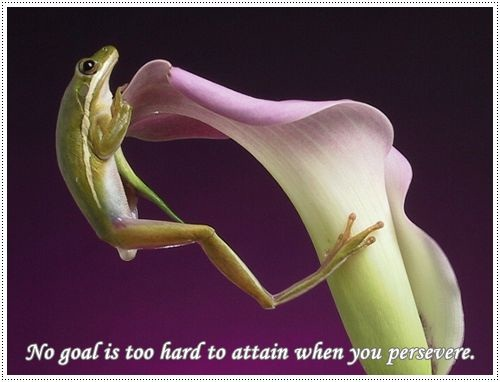 thoughts -no good is too hard to attain when you preserve