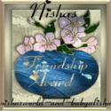 nishasfriendshipaward1