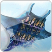 Manta ride at SeaWorld Orlando photo picture image