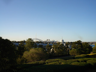 POTTS POINT DSC04543