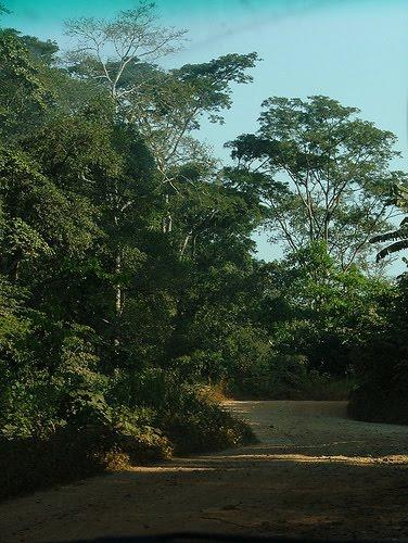Estrada Conda-Gabela
