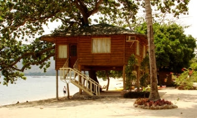 the tree house of laiya coco beach