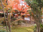 九年庵の庭