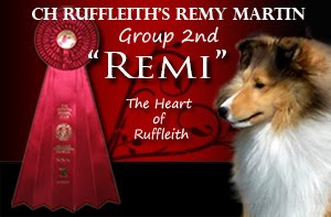 CH Ruffleith's Remy Martin