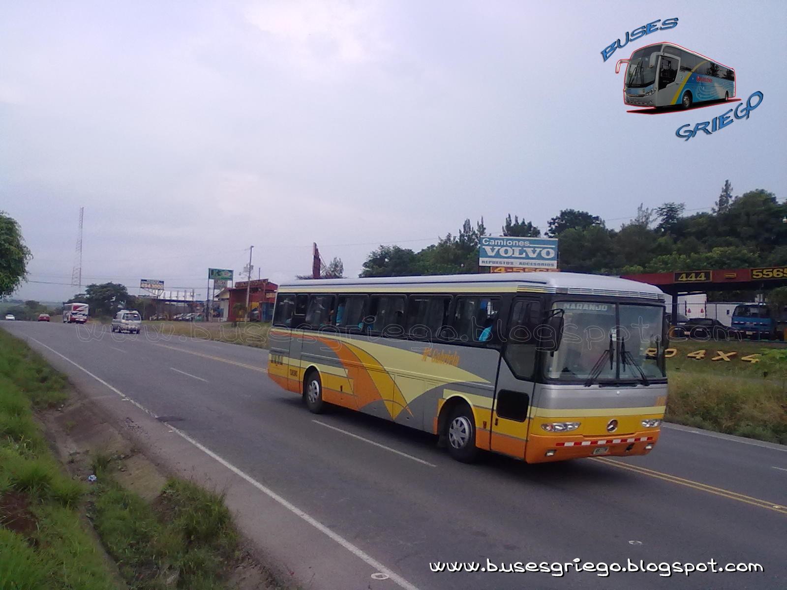 Buses griego especial mercedes benz monoblocos for Mercedes benz san jose