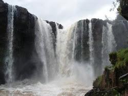Imagens do nosso Brasil