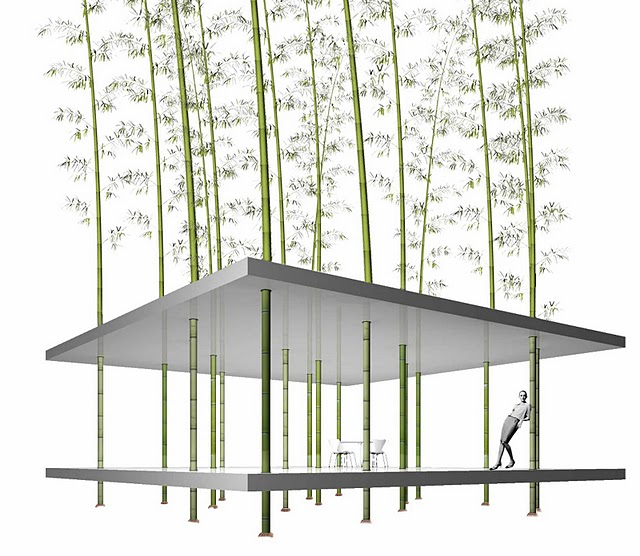 bamboo pavilion grow your own garden office - Growing Bamboo