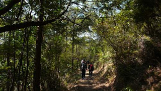 Image of hiking trail on Lantau Island, Hong Kong.