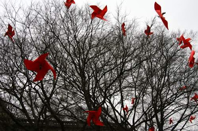 Image of bright red paper pinwheel flowers hung in the trees of Geneva near the site of Calvin's Academy...