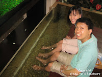 Fish Spa @ Pavilion