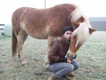 klik op de link hier onder voor de website over onze haflinger paarden