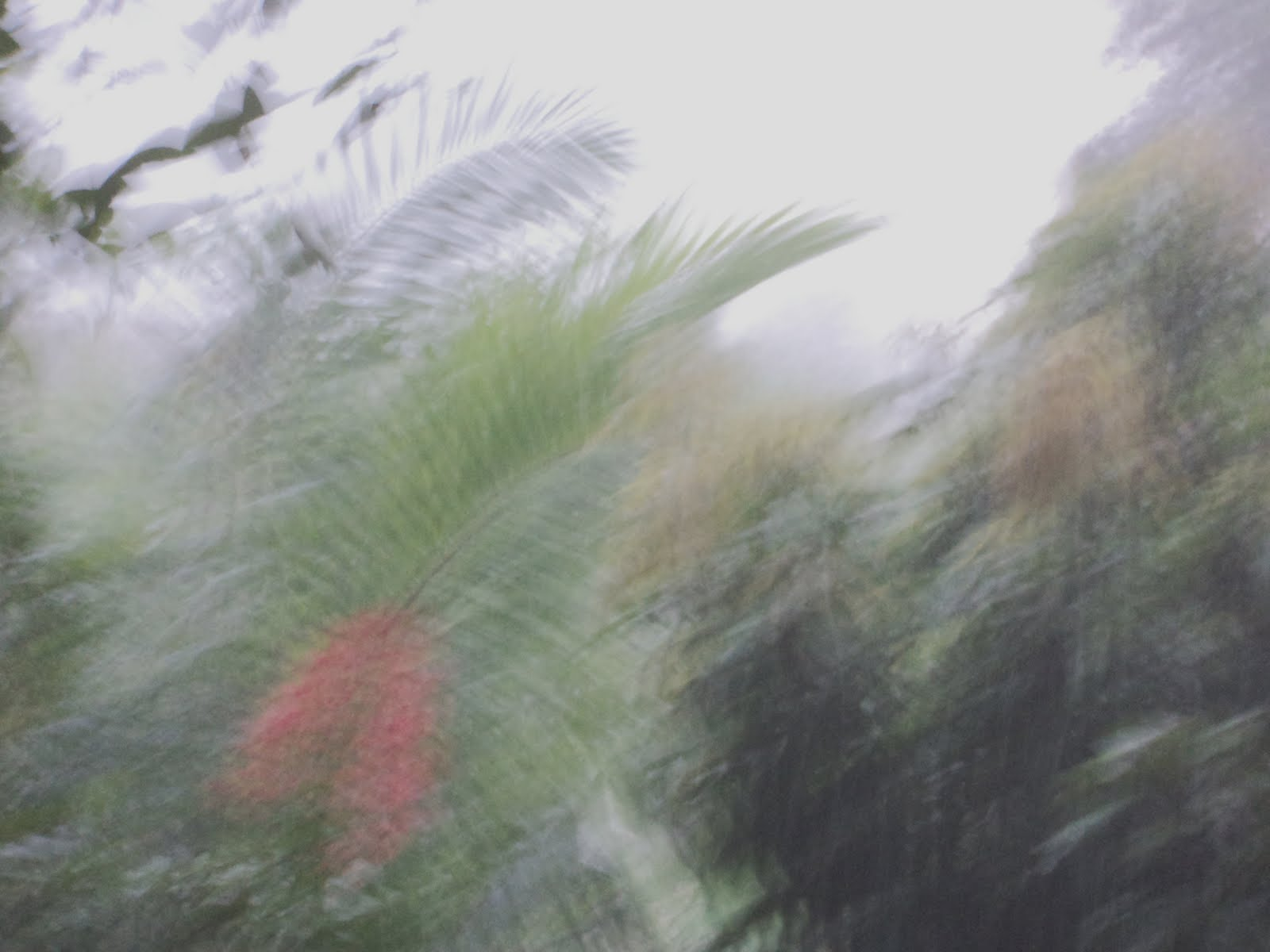 golf monsoon system
