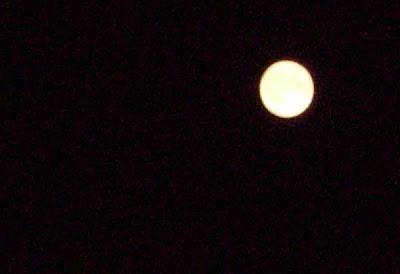 Cada siete años, se produce un año con 13 fases lunares, lo cual afecta de forma fatal en el estado de ánimo