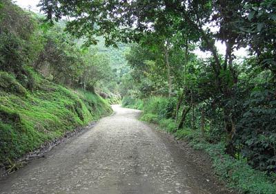 Este sendero de Tierradentro, Colombia, se parece mucho al que he caminado esta noche, en mis sueños, y al que se abre ante mí con miles de posibilidades. J.B.R. 2008