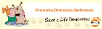 Donate your creations and save an animal!!