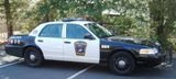 I love cop cars