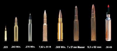 mundo arma fuego:
