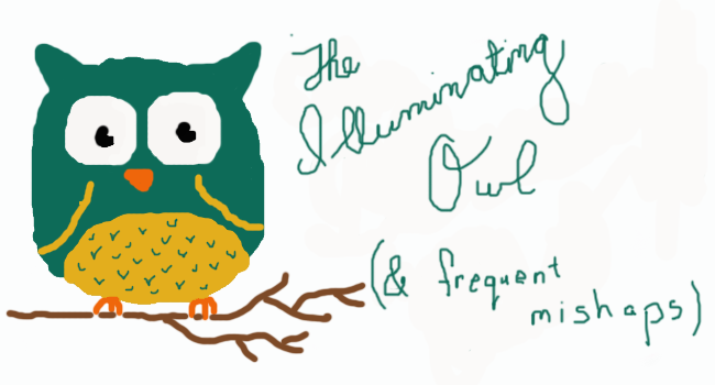 The Illuminating Owl