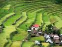 Terrazas Agricolas