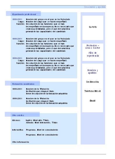 Curriculum Vitae: 2010