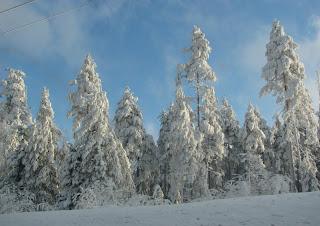 Lumimaisemaa