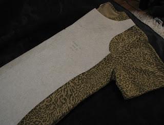 Leopardipaidan pienennystä