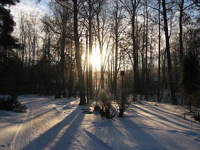 talvinen piha