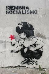 siembra el socialismo