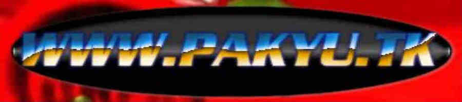 WWW.PAKYU.TK