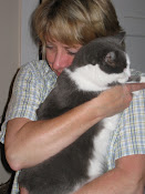 """""""The presence of a cat...seems to take the bite out of being alone."""" ~ Louis Camuti"""
