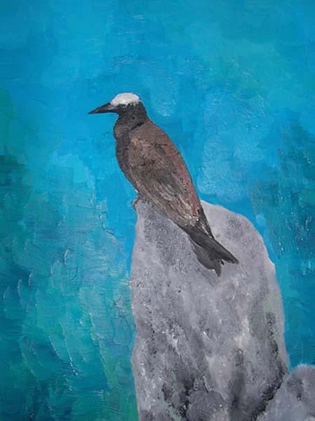 Uccello delle Seychelles