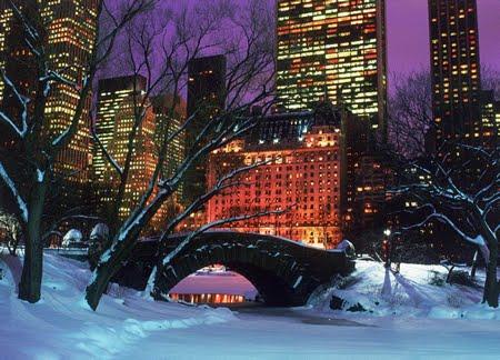 Central Park, 1/11/11