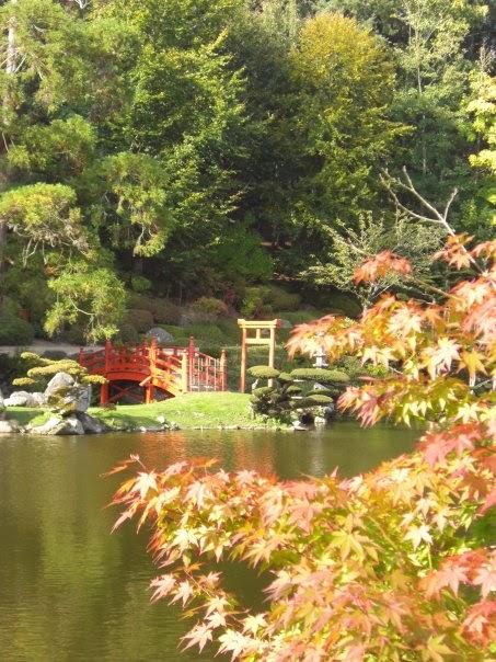 La f erailleuse le jardin oriental de maul vrier for Le jardin oriental de maulevrier