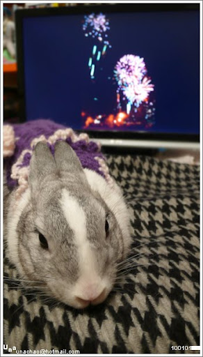 Magi says Happy New Year!!
