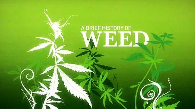 Breve historia sobre la marihuana según