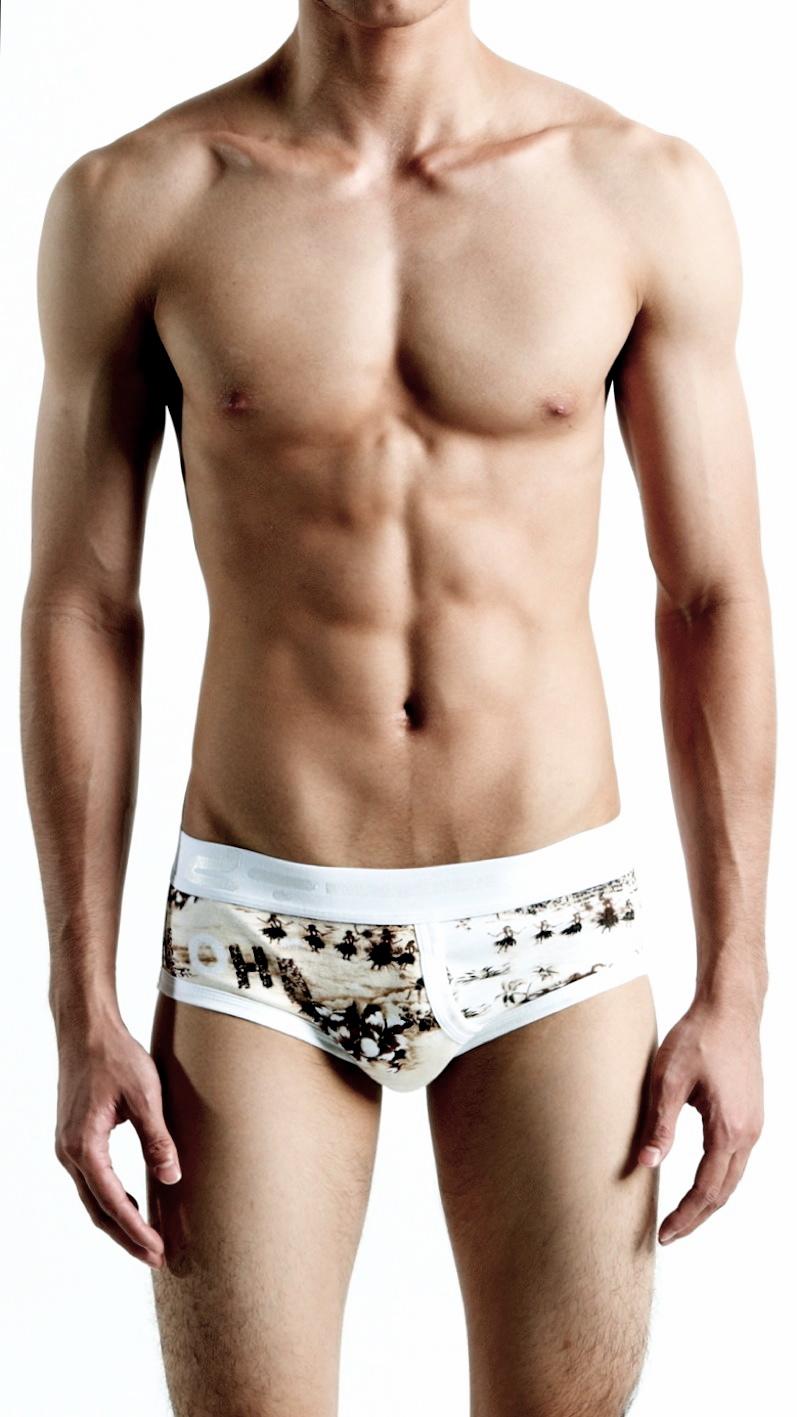 DT Underwear for Men